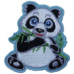 An adorable black and white panda bear is sitting up and is about to munch on a shoot of bamboo.