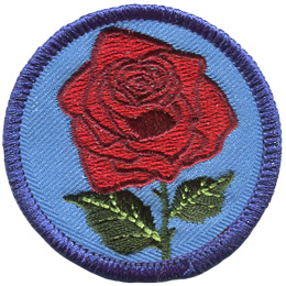 A beautiful red rose sits on a blue background. The rose is in full bloom and has two green leaves branching off its stem.
