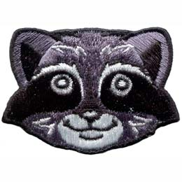 This friendly racoon face is staring straight at the viewer.