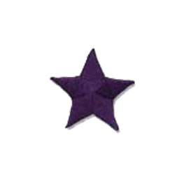 Star, Purple, Patch, Embroidered Patch, Merit Badge, Badge, Emblem, Iron On, Iron-On, Crest, Lapel Pin, Insignia, Girl Scouts, Boy Scouts, Girl Guides